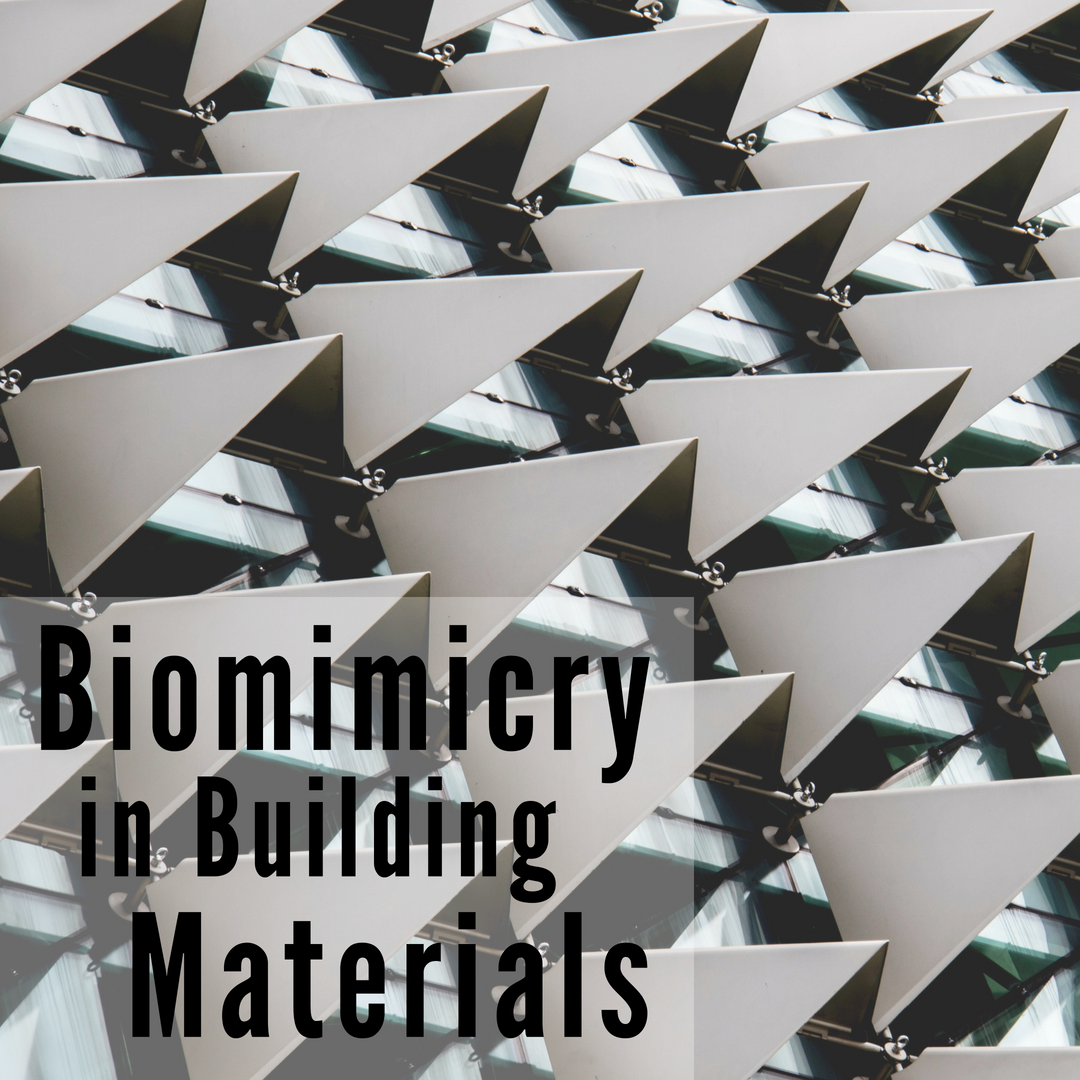 Biomimicry in the Building Environment