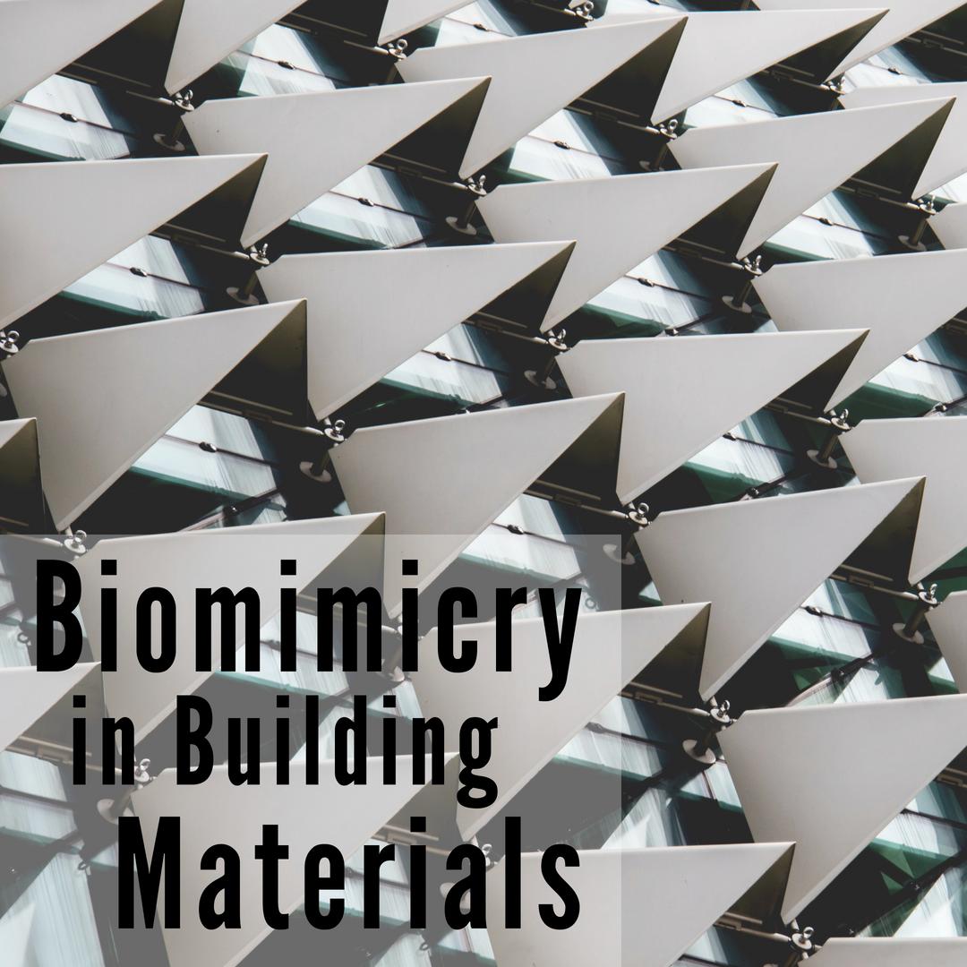 CaraGreen Biomimicry