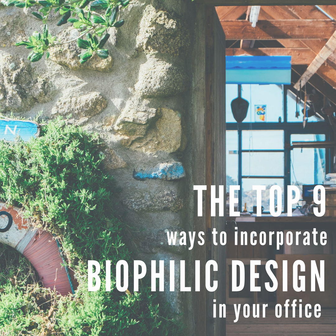 Biophilic Design CaraGreen Office