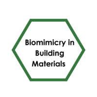 Biomimicry in the Built in Environment